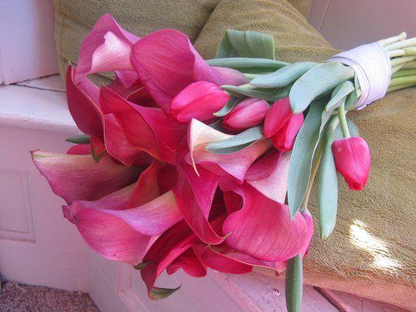 Tmx 1237929945800 IMG0393 Cape May Court House wedding florist