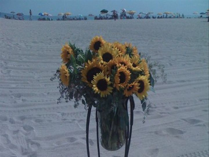 Tmx 1281486908689 Sunflowerpalooza002 Cape May Court House wedding florist