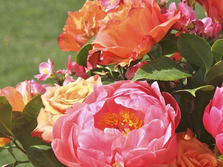 Tmx 1413578058834 Img598 Barnard wedding florist
