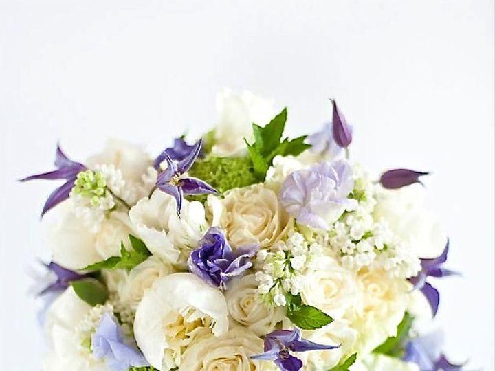 Tmx 1413578076605 L4mtngrr9opmo60ma8kw9k5xzrsdivxe Kz2vxfssuwvi2fjqk Barnard wedding florist