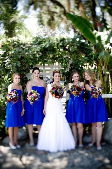 Flowers, blue, bouquets