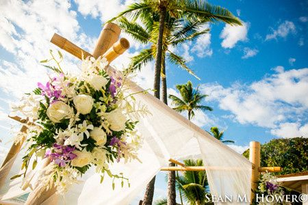 Canopy Florals