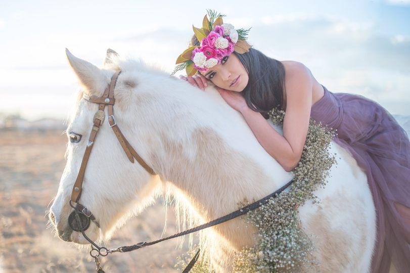 victorias bridal horse 08