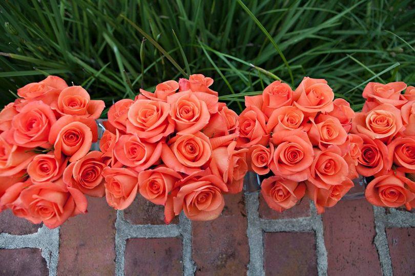 Flowers900x600pxArce