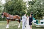 La Donna Weddings Officiants & Ceremony Coordinating Services image