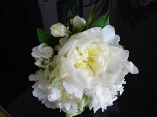 flowers084
