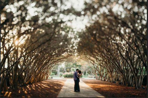 Couple Under Trees