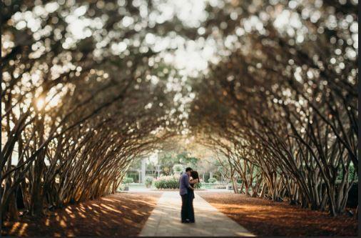 Tmx 8 51 1009778 159716205467274 Fort Worth wedding photography
