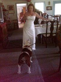 Tmx 1295640769353 Bridewithdogs Gettysburg, PA wedding venue