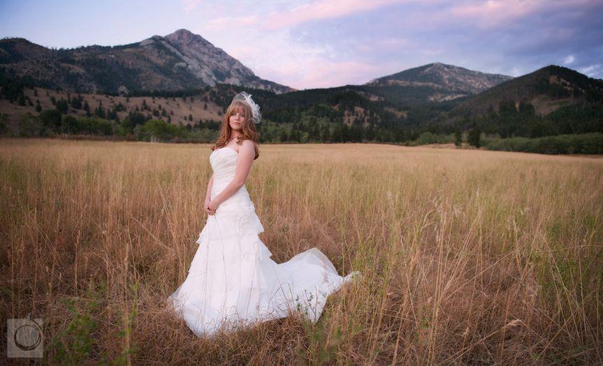 15 11 photo shoot at springhill