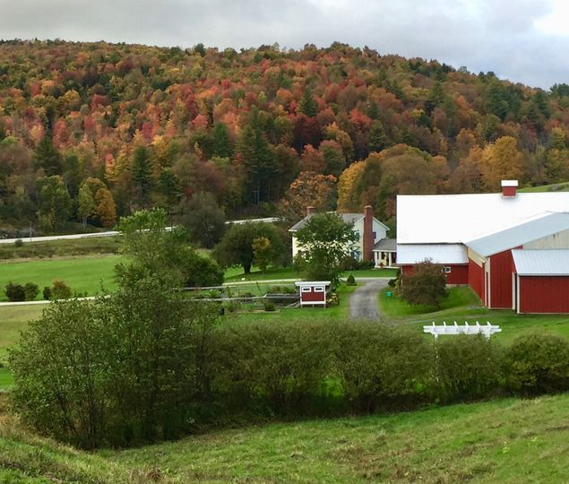 Farm grounds