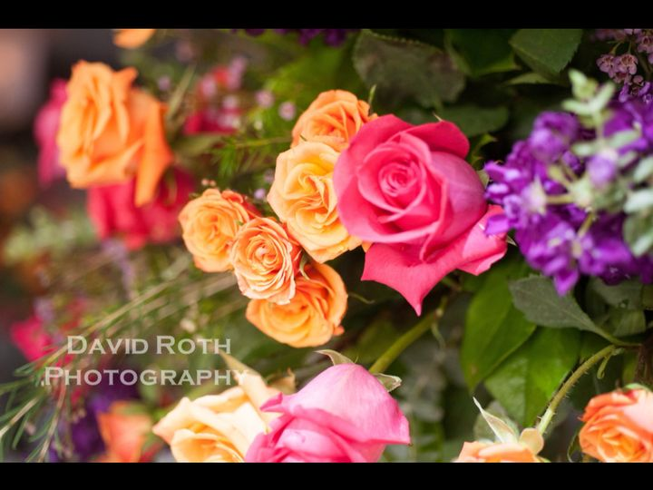 Tmx 1436800095763 Photo 1 Woodbury wedding florist