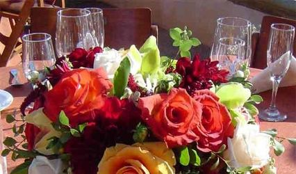 Dandelion Floral