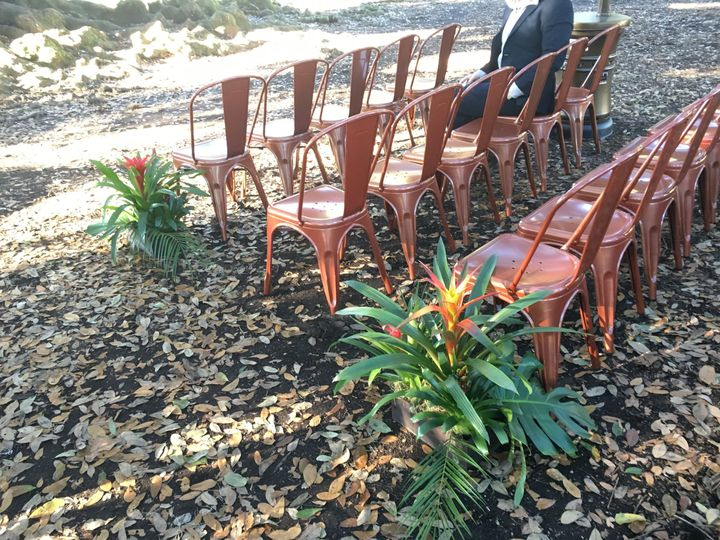 Great alternative to white chairs for a wedding