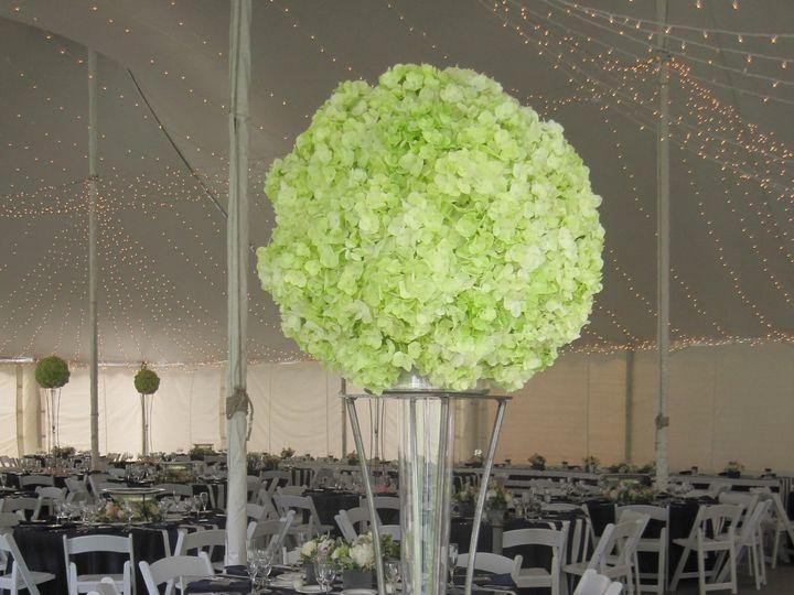 Tmx 1468255697967 Wedding 6.20.15 011 Waukesha, WI wedding florist