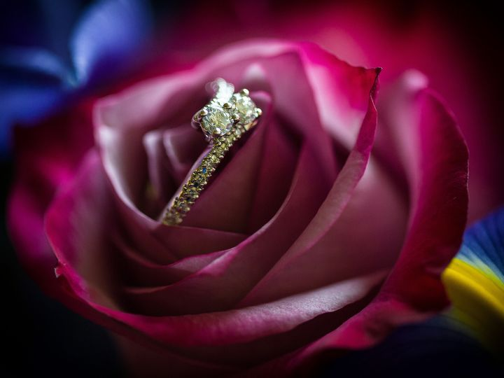 Tmx 1504924814430 Wedding Rings In Flowers Seattle, WA wedding photography