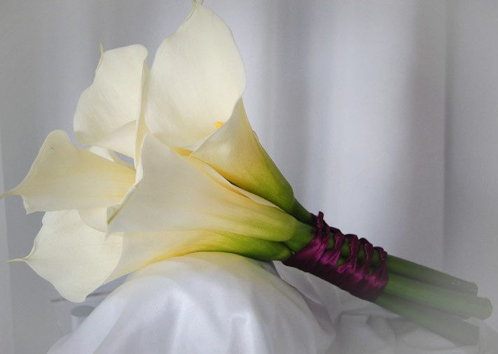 A hand tied bouquet of large white calla lilies tied with deep purple ribbon.