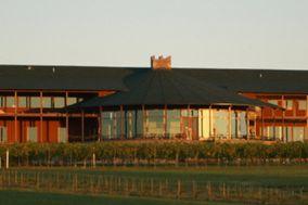 Weingarten Vineyard