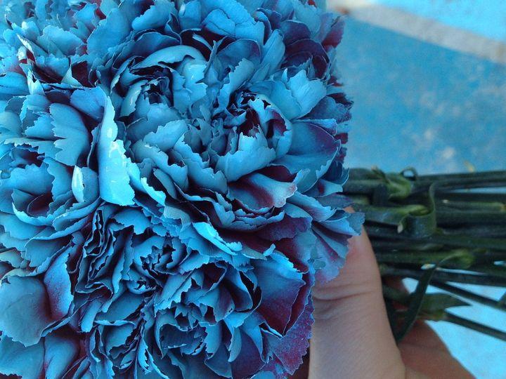 Tmx 1421546332336 Img4644 Kennewick wedding florist