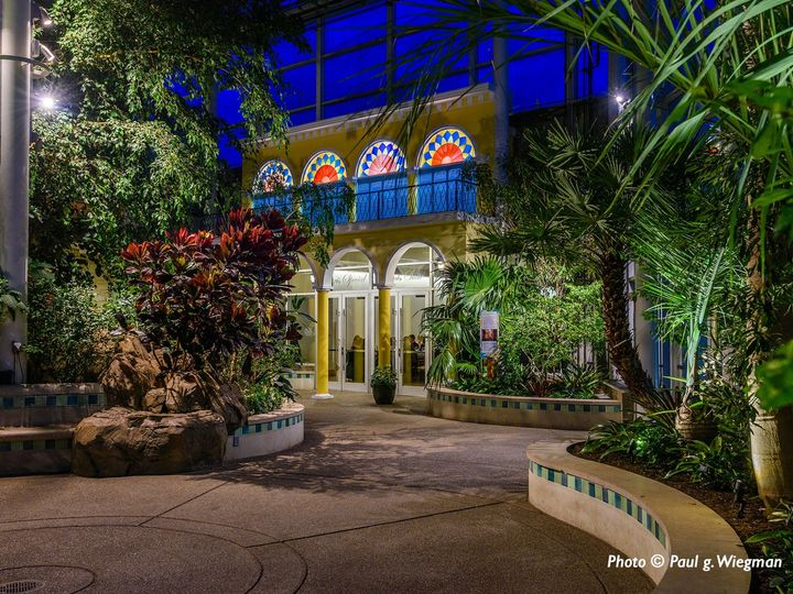 Tmx Tropical Forest Credit Paul G 51 74588 157712915554994 Pittsburgh, PA wedding venue