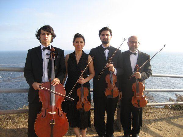 Bravo String Quartet