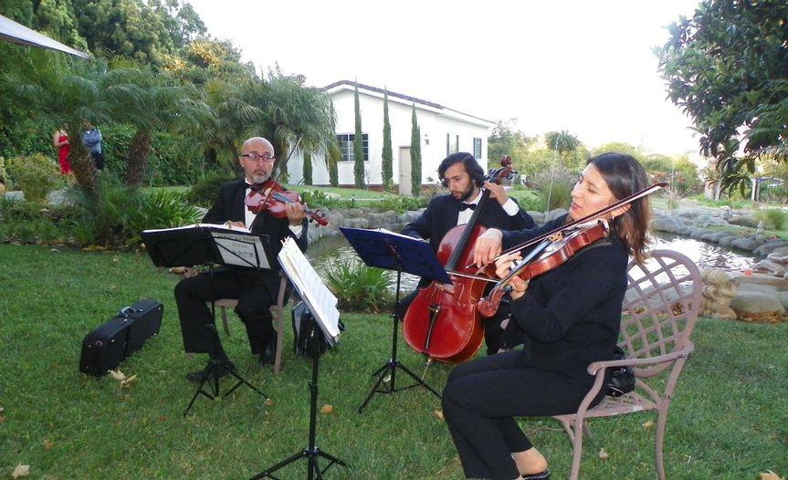 Trio20125