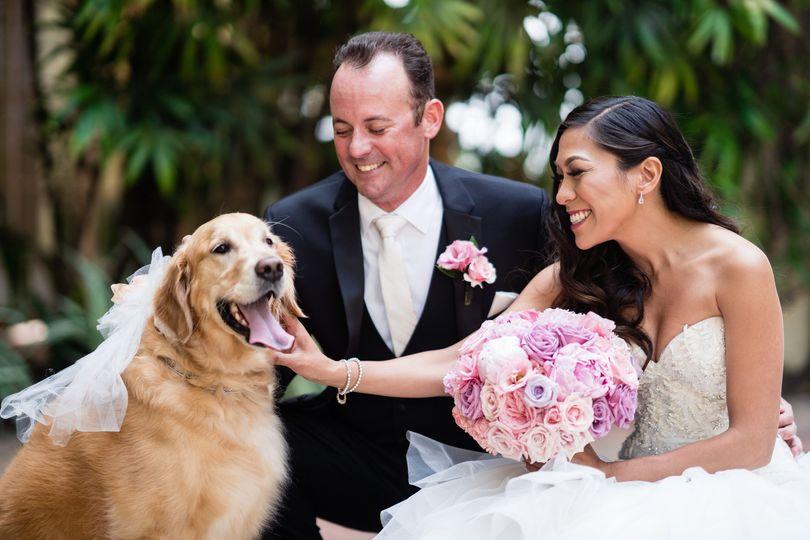 Pet Friendly Weddings