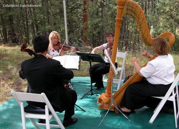 Tmx 1175041116566 Trio Harp0011 Littleton, Colorado wedding ceremonymusic