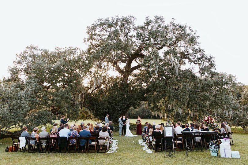 Gorgeous Oak Tree backdrop at Runnymede Plantation