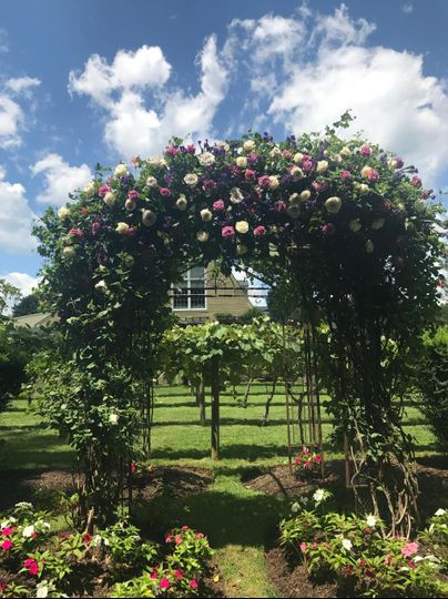 Roses Arch