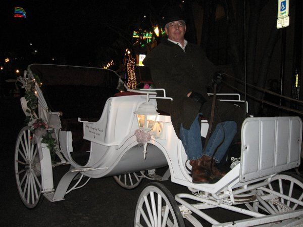Sam and the Princess Carriage