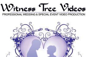 Witness Tree Videos