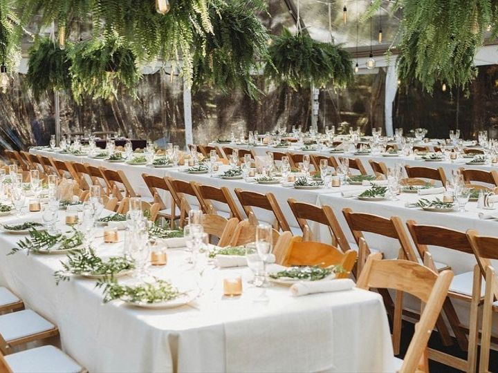 Tmx Edison Bulb Pendants Ferns 51 441888 159353294976782 Brookfield, CT wedding dj