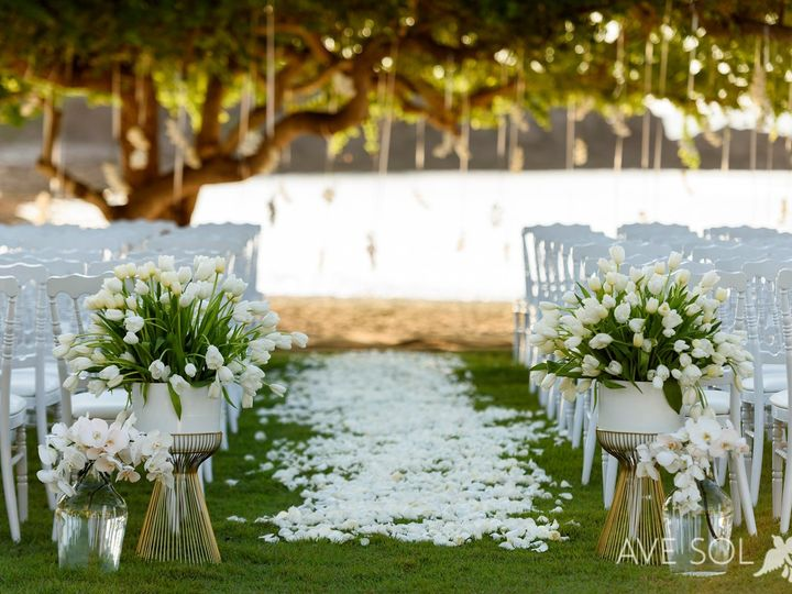 Tmx Carissa Ben 3 Firstlook 88 X2 51 771888 1570399399 Puerto Vallarta, MX wedding planner