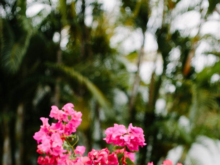 Tmx Taryn Baxter Photographer Tarafranck Wedding 428 51 771888 1570400658 Puerto Vallarta, MX wedding planner