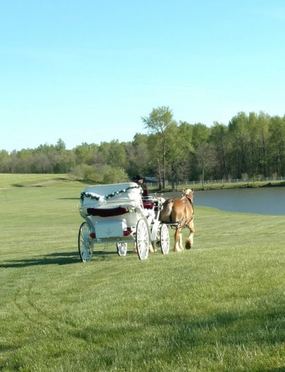 carriage at lake
