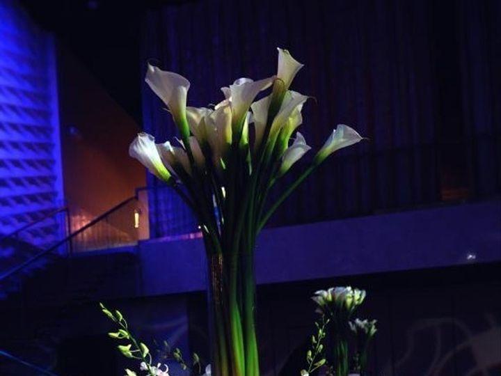 Tmx Img 7206 51 996988 1571145601 Hollywood, FL wedding florist
