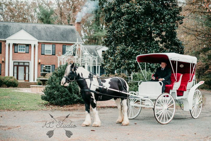 horse carriage house 51 1018098