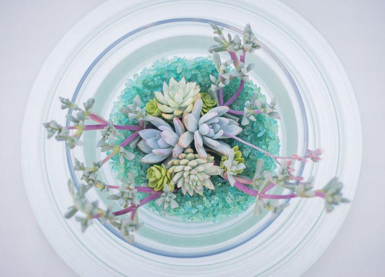 12succulentmandalaaquachargercenterpiecereceptionw