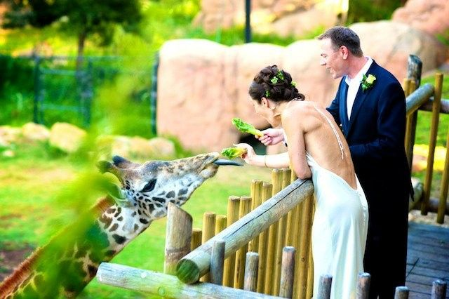 Tmx 1415490146111 769461195402714442036122357n Santa Barbara, CA wedding venue