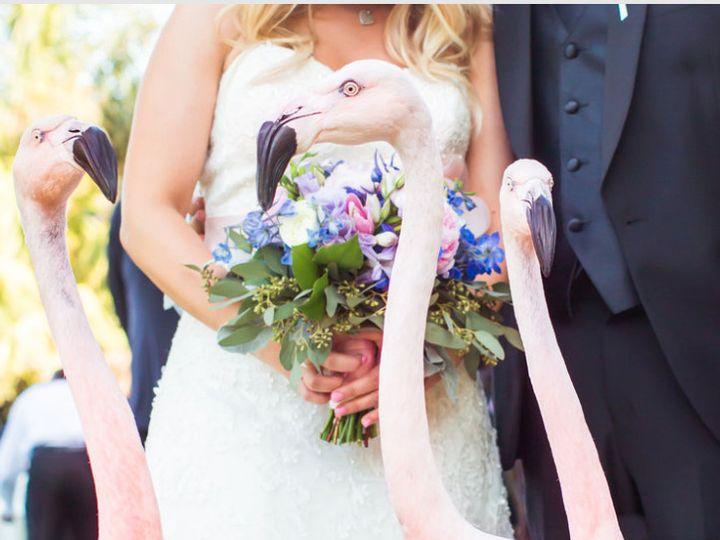 Tmx 1415490421814 Screen Shot 2014 11 08 At 3.38.47 Pm Santa Barbara, CA wedding venue