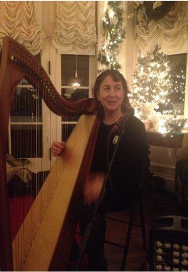 Musician on the harp