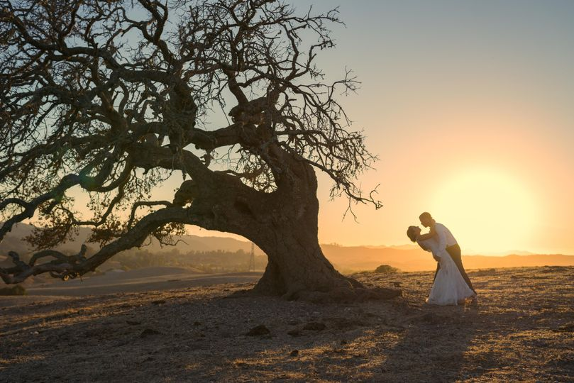 Oak & Barrel Photography
