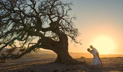 Oak & Barrel Photography + Films