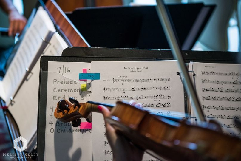 The violin and music notes