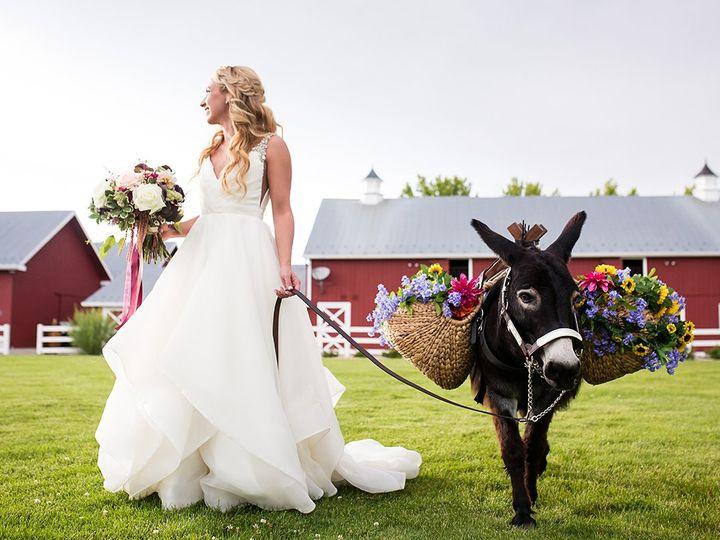 Tmx 8 11 19 0814 Alyssaandgeoffsweddingphotos 51 207498 160331706064544 Larkspur, Colorado wedding venue