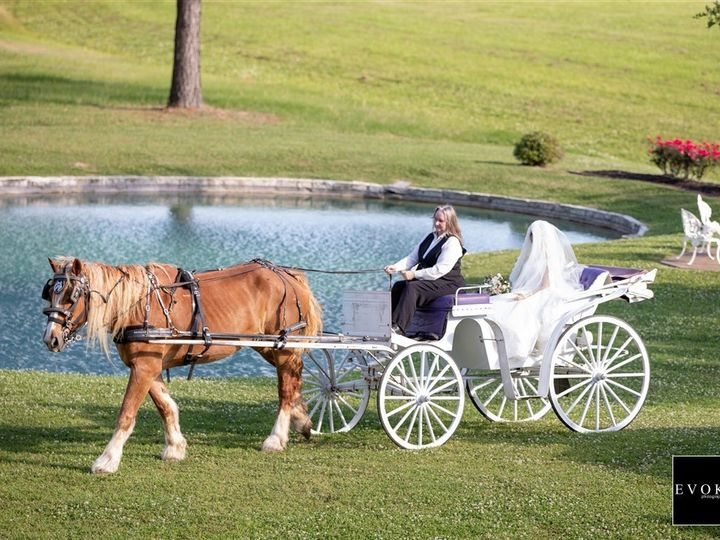 Tmx 106425773 51 3598 157486007568473 Hockley, TX wedding venue
