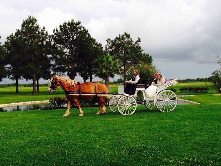 Tmx 1431792916807 Horse And Carriage At House Plantation In Houston Hockley, TX wedding venue