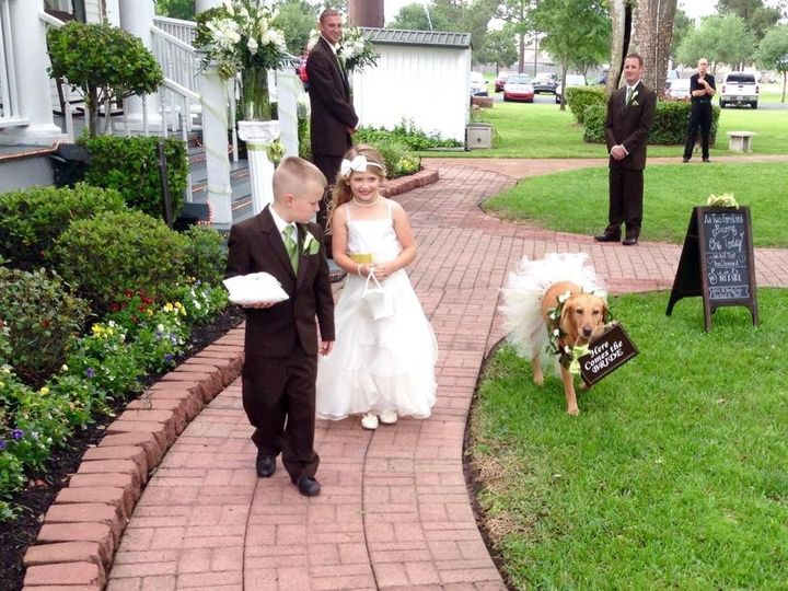 Tmx 1431793188395 A Dog A Ring Bearer And A Flower Girl Hockley, TX wedding venue