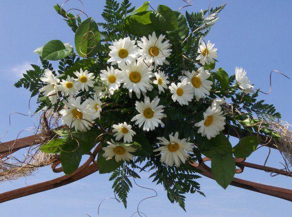 Tmx 1222793651823 Heather2008020 Marysville wedding florist